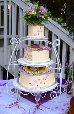 Web Cake 16B