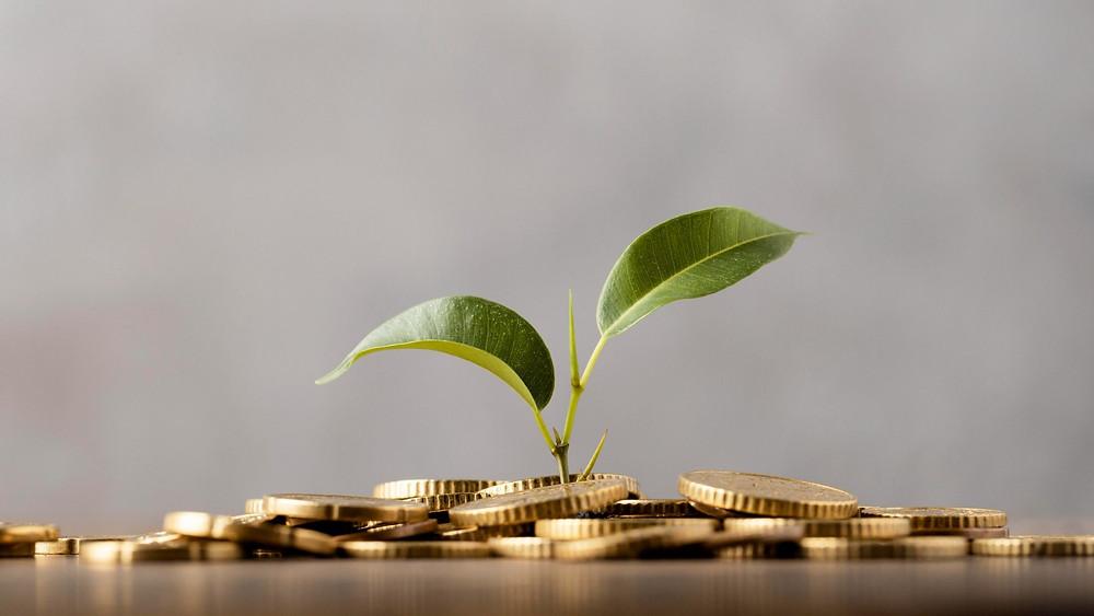 MEDZO Consultoria Financeira - Dicas de como manter um capital de giro estável