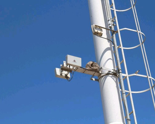 2 radares instalados ao mesmo poste