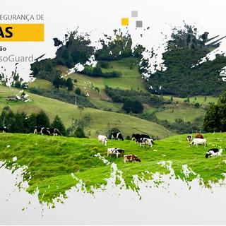 Fazendas - LinkedIn Minas Eletrônicas.jpg