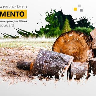 Desmatamento - LinkedIn Minas Eletrônicas.jpg