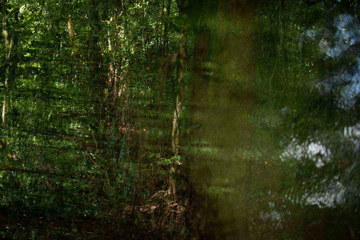 Amazônia Sutil_17