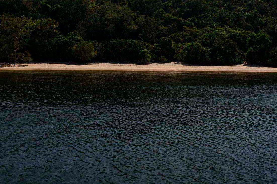 Amazônia Sutil_01