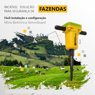 Fazenda - Facebook e Instagram - Minas Eletrônicas.jpg