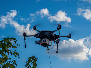Drone Albatross (vista 1)