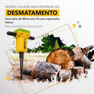 Desmatamento - Facebook e Instagram - Minas Eletrônicas.jpg
