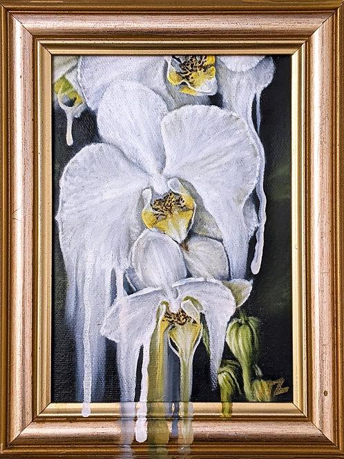 Le Petit - Orchidée