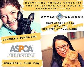 AVMLA WEBINAR Nov 14, 2018 AVMLA.org .jp