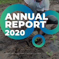 2020-annual-report.png