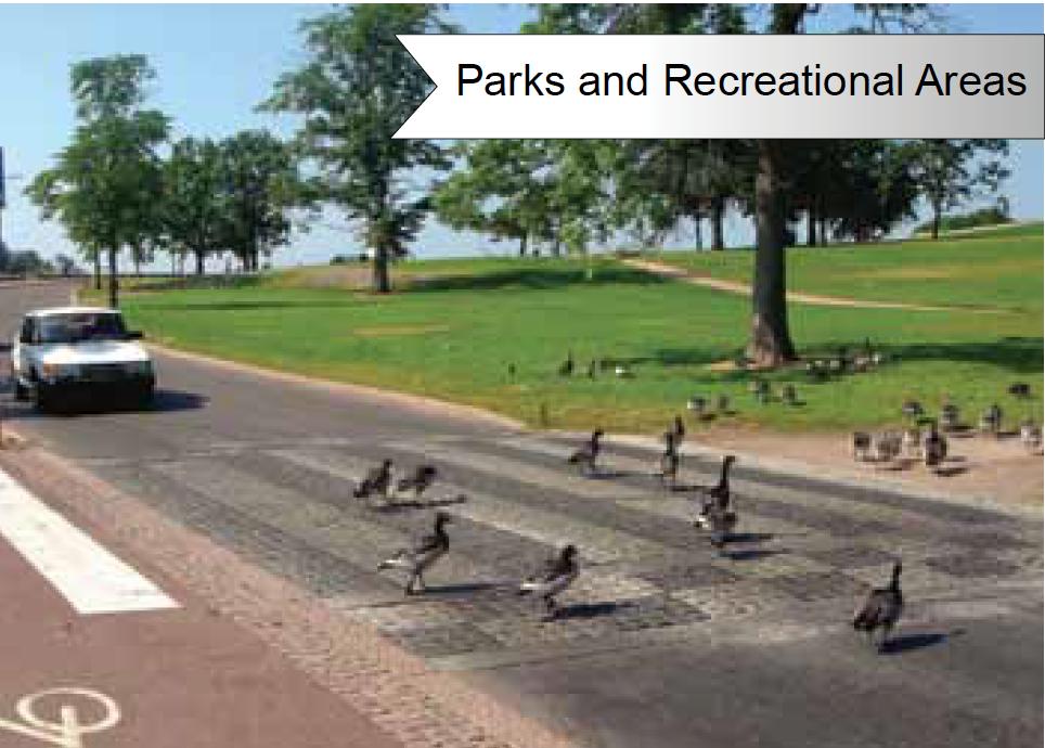 Goose Doctors LLC Parks