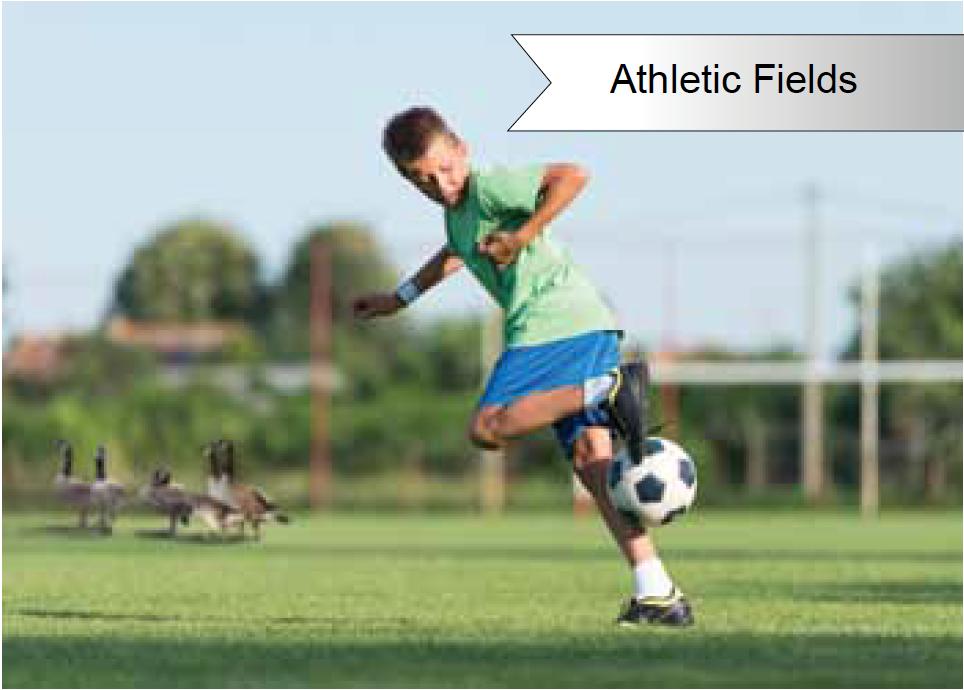 Goose Doctors LLC Athletic Fields