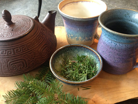 Trees For Teas And More