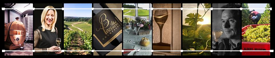 Contact-Champagne-Albert-Beerens.png