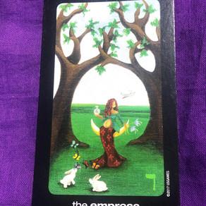 1-8th June tarot, numerology, astrology - Full Moon in Saggitarius