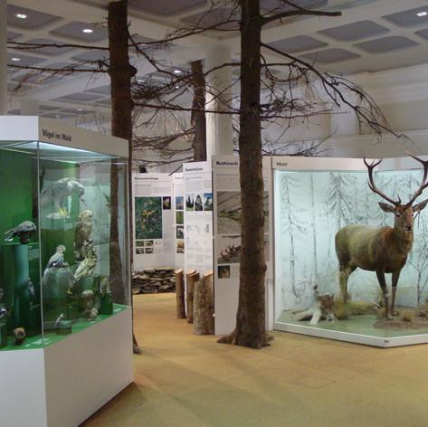 Unser Museum