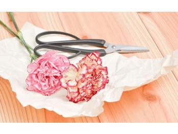 生花を髪飾りに 前処理の仕方