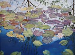 Bridgeds Pond