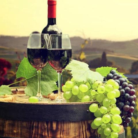 The Wonderous World of Israeli Wine