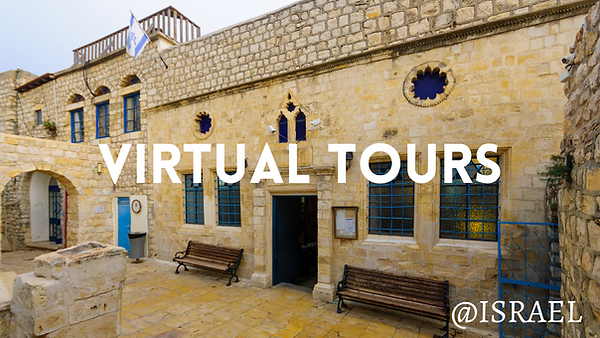 virtual tours website.png
