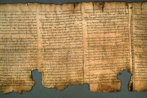 The Wonder of the Dead Sea Scrolls