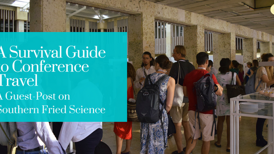A Survival Guide to Conference Travel