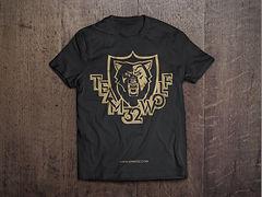дизайн логотипа, дизайн полиграфии, визитки в брянске, сувенирная продукция, футболки, дизайн