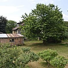 PRODÁNO - Rodinný dům 273 m², zahrada 435 m² Krnsko, Mladá Boleslav