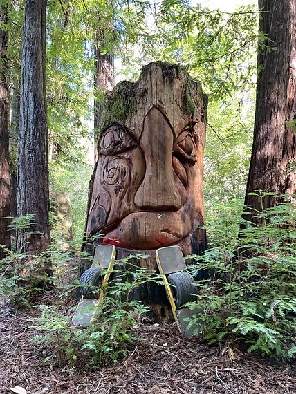Camp Navarro Tree Carving.HEIC
