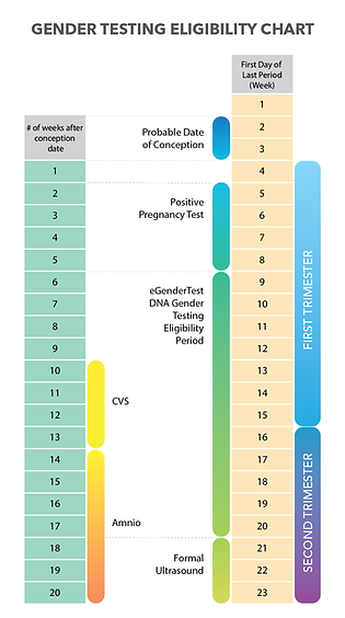Gender_Testing_Eligibility_Chart-03.png