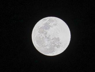 Moon Dancing