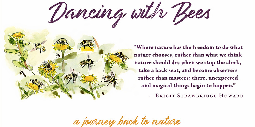 Brigit's Bee Talk and Book Signing