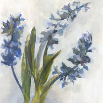 Hyacinths - Pippa Meddings.jpeg