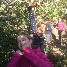 Apple Day!