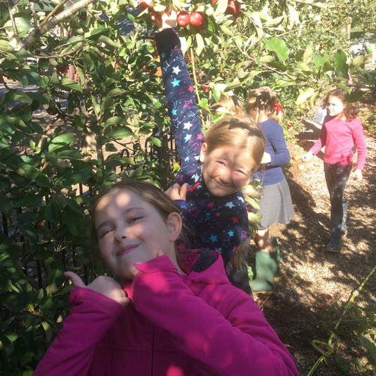 Apple Day!