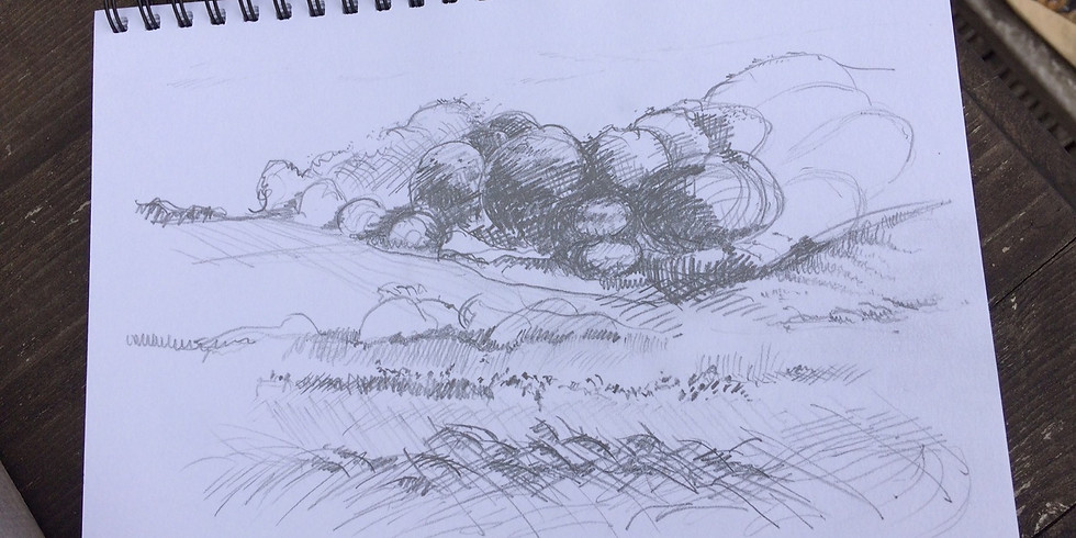 Tuesday AM Sketching Class
