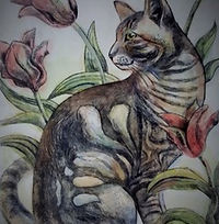 Tiger in the tulips.jpeg