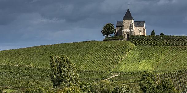 Merlot wines from Dawe Wines
