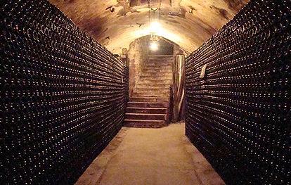 Goutoube Champagne   Dawe Wines