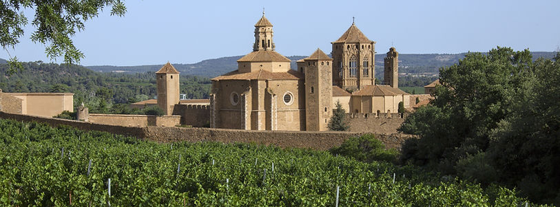Spanish wines and fine riojas available from Dawe Wines, Bath Somerset United Kingdom.