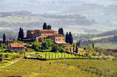 Italian wines from Dawe Wines