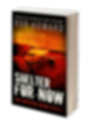 02_sfn_3dcover_noshadow.png
