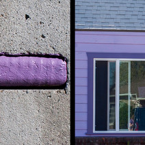 purpleCE.jpg