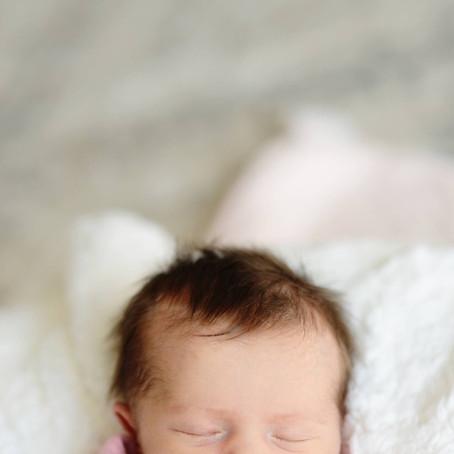 featured photoshoot: carly's newborn portraits