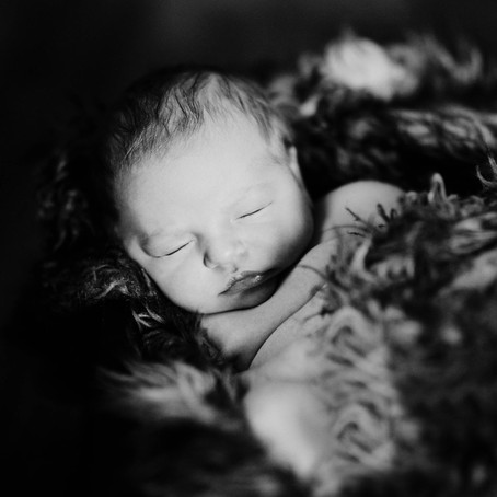 newborn | everett