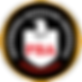 PBA Gold Logo