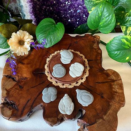 Fairy Stones (Raw + Unpolished)