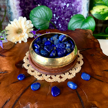 Lapis Lazuli Tumbled Stones (Small)