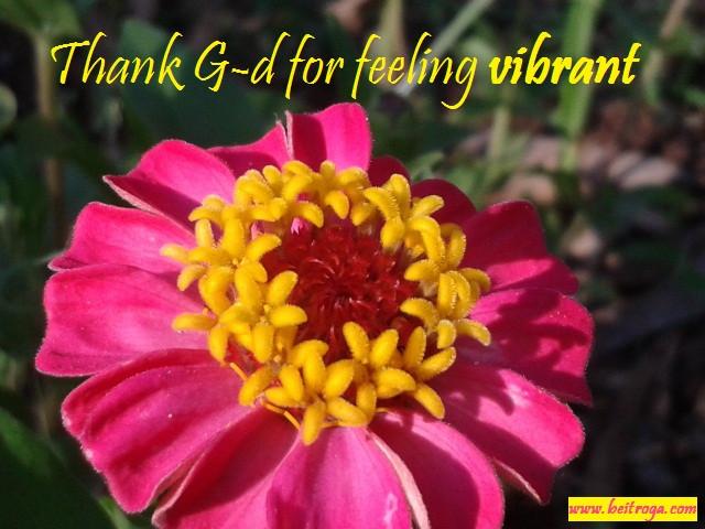 Thank G-d for feeling Vibrant.jpg