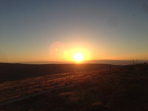 Summer Solstice Essence (Sun, Fire, Yang Energy)