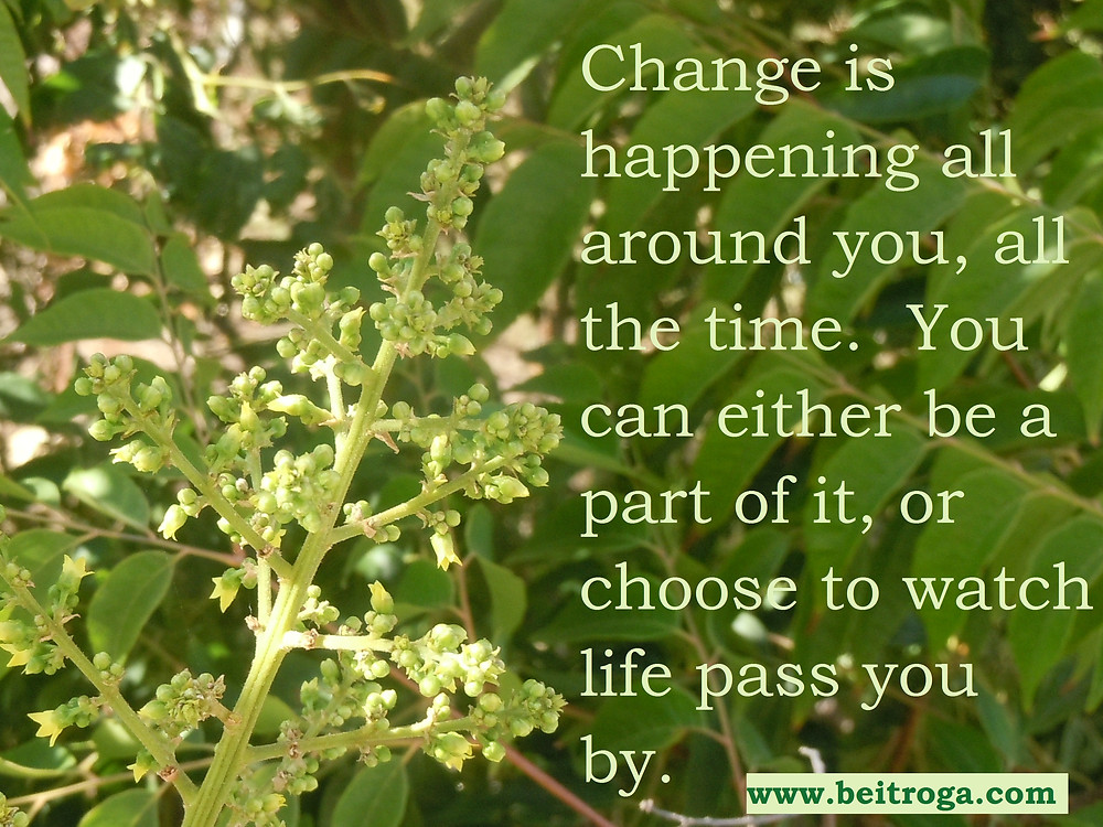 Change is happening all around you.jpg